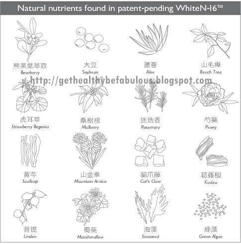 nutriwhite-ingredients